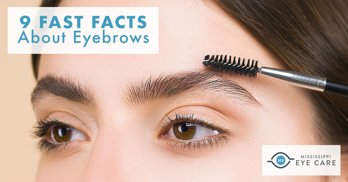 Read more about the article 9 Fast Facts About Eyebrows